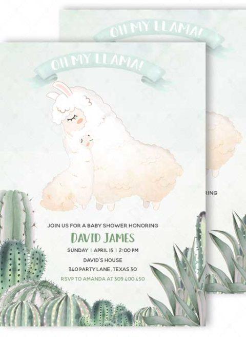 Llama Baby Shower Invitation Boy