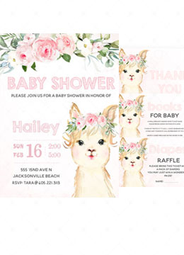 Llama Baby Shower Party Supplies