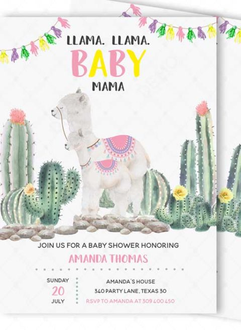 llama Mama baby shower Decorations