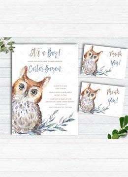 Baby Owl Boy Shower Invitations